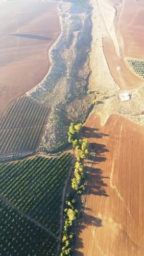 תצפית על עמק יזרעאל, עם skytrek - סקיי טרק-חברת התעופה לכדורים פורחים
