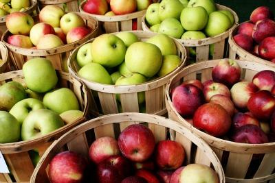 תפוחי עץ, הפרי האסור והבריא, 106il בריאות ותזונה