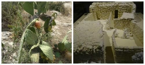 תגלית העיר המסתורית מלפני 3000 שנה נחשפת. האם זו עדות לממלכת דוד? קרדיט צילום 106il